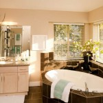 bathroom venetian blinds